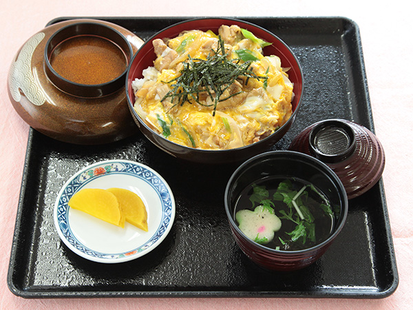 Chicken and egg on rice