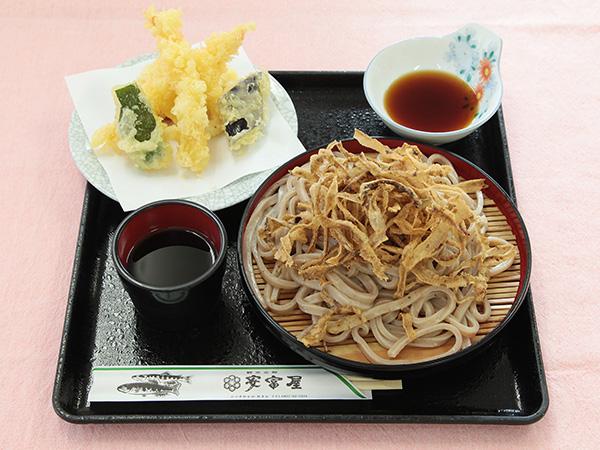 Tempura and cold gobo noodles
