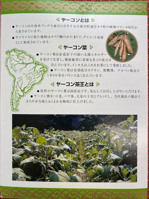 ヤーコン茶王 箱03